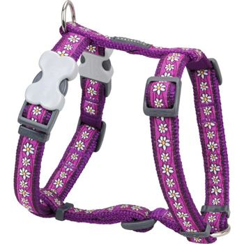 Postroj RD 20 mm x 45-66 cm - Daisy Chain Purple